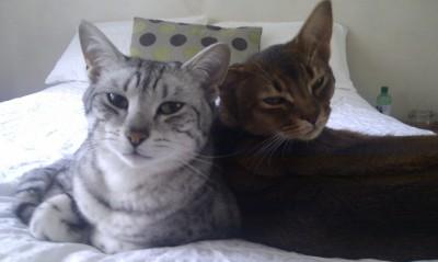 Ptolemy & Cosmo
