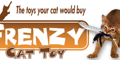 FRENZY Interactive Toys
